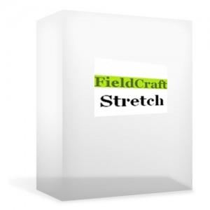 9 Stretch